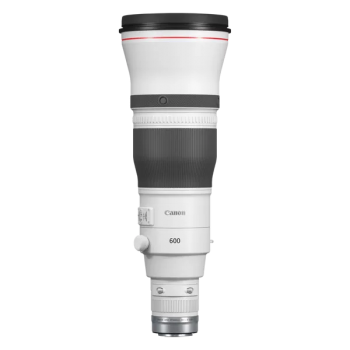 Canon 600mm f/4 L RF IS USM