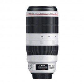 Canon 100-400/4.5-5.6